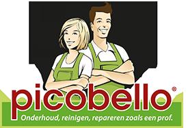 pico_logo_nl